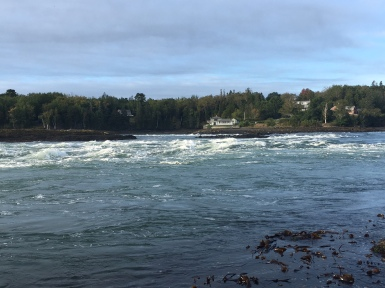 Reversing Falls situated at the end of the point.